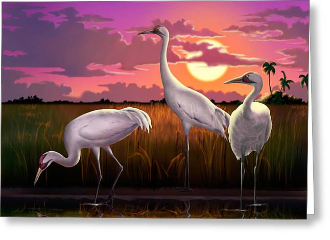 Whooping Cranes At Sunset Tropical Landscape - Square Format Greeting Card by Walt Curlee