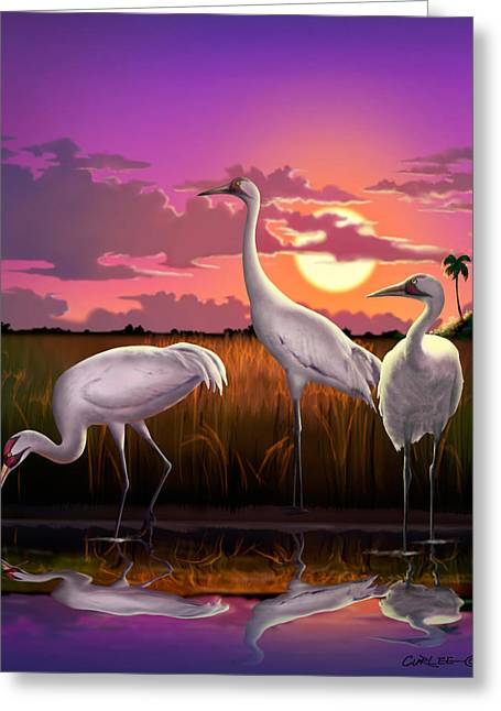 Whoops Greeting Cards - Whooping Cranes Tropical Florida Everglades Sunset birds landscape scene purple pink print Greeting Card by Walt Curlee