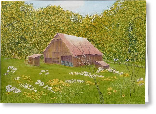 Lots Of Daisies Greeting Cards - Whose Barn - What Barn - My Barn  Greeting Card by Joel Deutsch