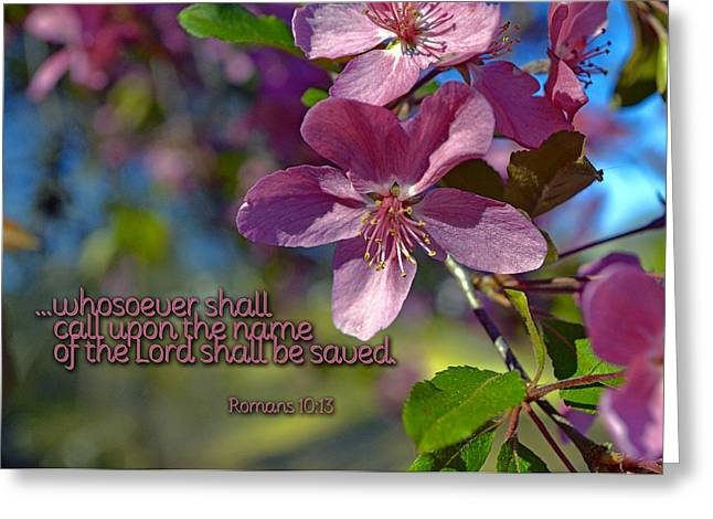 Crabapple Cards Greeting Cards - Whosoever Greeting Card by Larry Bishop