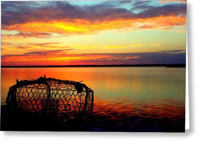 Why Men Fish Greeting Card by Karen Wiles