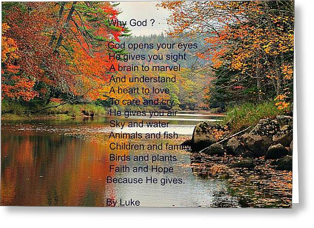 Nova Scotia Photographers Greeting Cards - Why God? Greeting Card by Larry Matthews