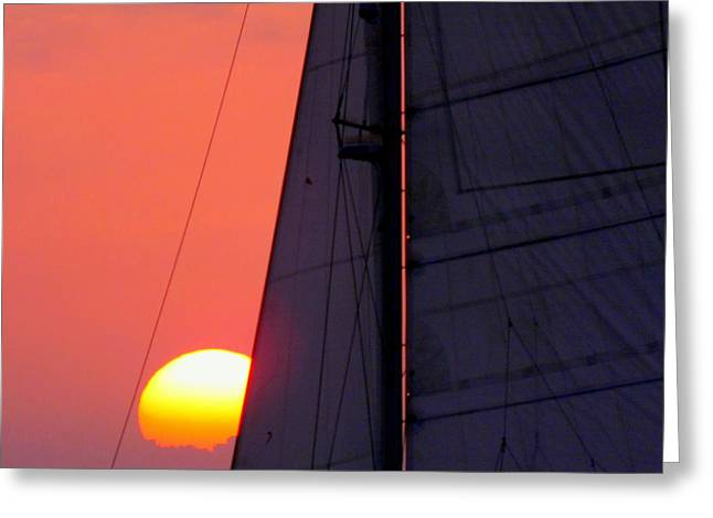 Best Sellers -  - Yellow Sailboats Greeting Cards - Why We Sail Greeting Card by Karen Wiles