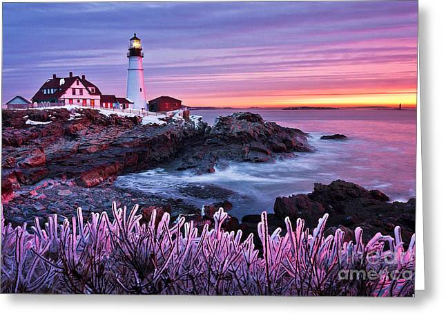 Portland Head Light Greeting Cards - Wicked Garden Greeting Card by Benjamin Williamson