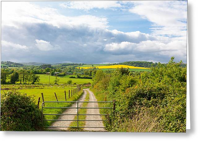 Harvest Time Greeting Cards - Wicklow County Greeting Card by Semmick Photo