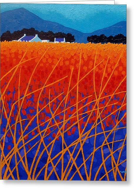 Orange Posters Greeting Cards - Wicklow Meadow Greeting Card by John  Nolan