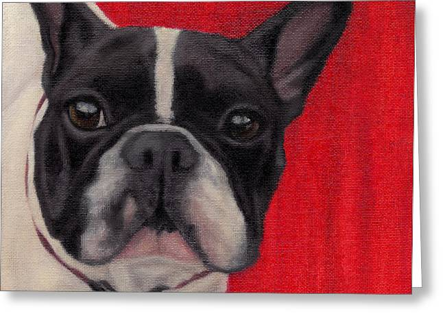 Bully Greeting Cards - Wide-Eyed Red Greeting Card by Dana Feagin