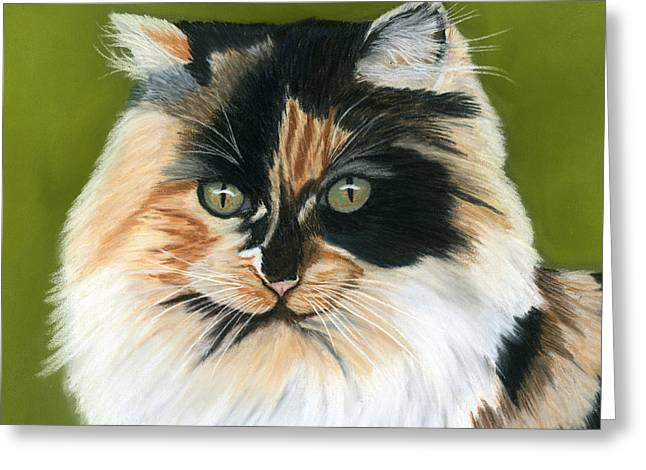 Cat Prints Pastels Greeting Cards - Wide Eyed Greeting Card by Sarah Dowson