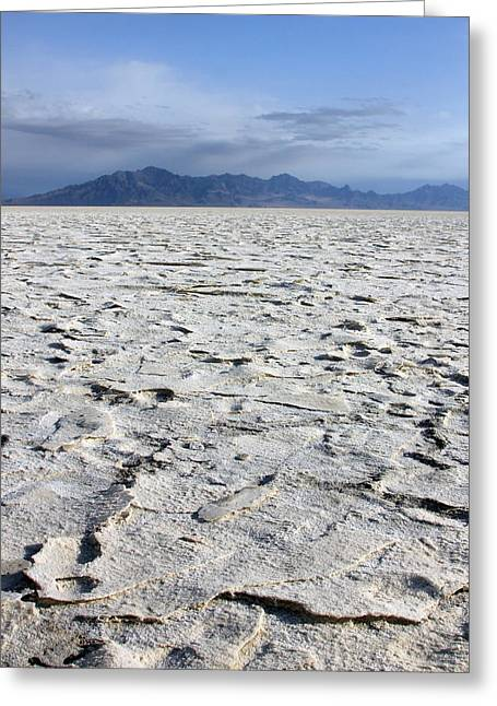 Dry Lake Greeting Cards - Wide Open  Greeting Card by Johnny Adolphson