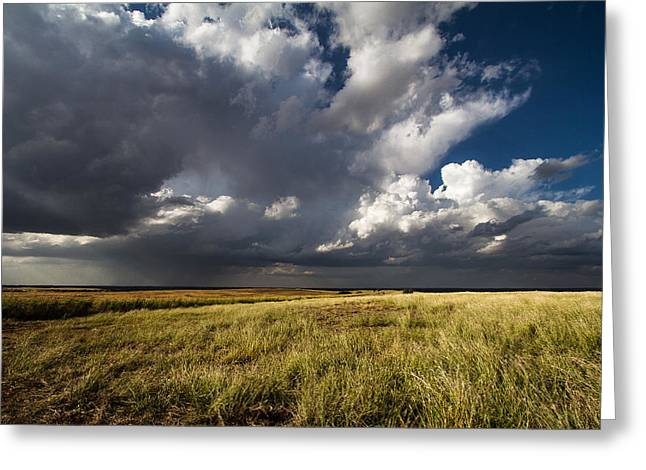 Prairie Art Greeting Cards - Wide Open Spaces Greeting Card by Sean Ramsey