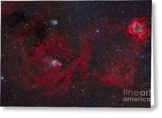 Rosette Digital Art Greeting Cards - Widefield View Featuring The Rosette Greeting Card by Rogelio Bernal Andreo