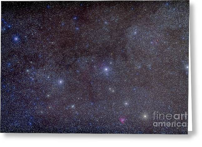 Double Cluster Greeting Cards - Widefield View Of The Constellation Greeting Card by Alan Dyer