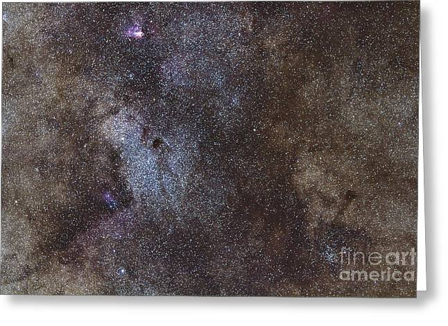 Interstellar Space Greeting Cards - Widefield View Of The Sagittarius Star Greeting Card by Alan Dyer