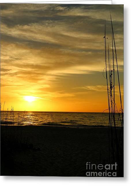 Wiggins Greeting Cards - Wiggins Pass Sunset With Seaoats Greeting Card by Christiane Schulze Art And Photography
