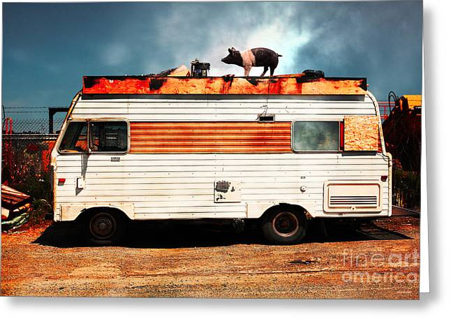 Trailer Trash Greeting Cards - Wilbur The Pig Goes On Vacation 5D22705 Greeting Card by Wingsdomain Art and Photography
