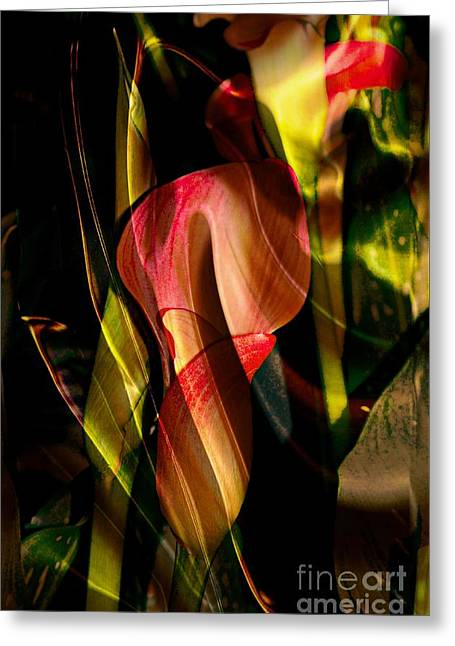 Floral Digital Art Digital Art Greeting Cards - Wild Abstract Greeting Card by Kathleen Struckle