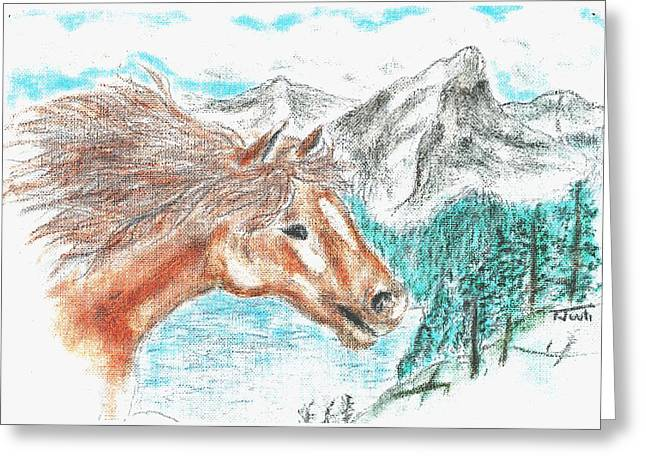 Wild And Free Greeting Card by Shaunna Juuti