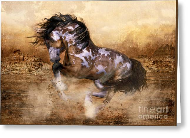 Wild Horse Greeting Cards - Wild and The Free Greeting Card by Shanina Conway
