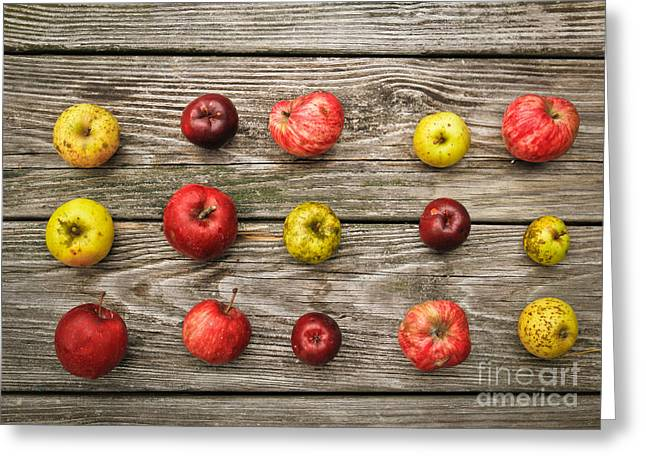 Local Food Greeting Cards - Wild Apples Greeting Card by Carol Sullivan
