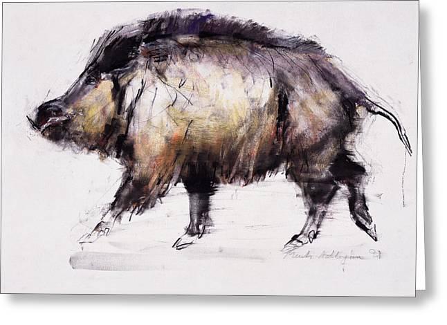 Wild Boar Greeting Card by Mark Adlington