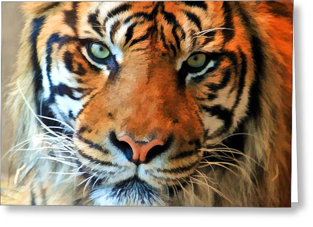 Bobcats Photographs Greeting Cards - Wild Cat Greeting Card by Athena Mckinzie