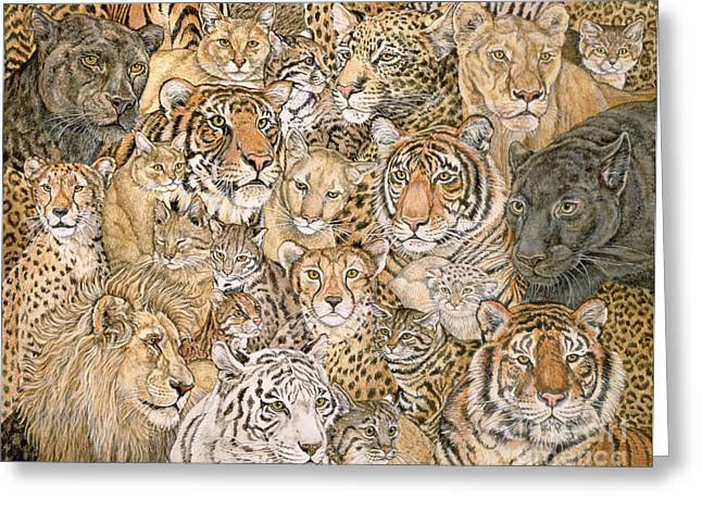 Wild Cat Spread Greeting Card by Ditz