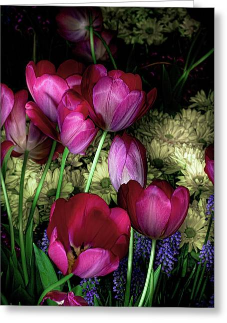 Linda Matlow Greeting Cards - Wild Crazy Beautiful Tulip Garden Greeting Card by Linda Matlow
