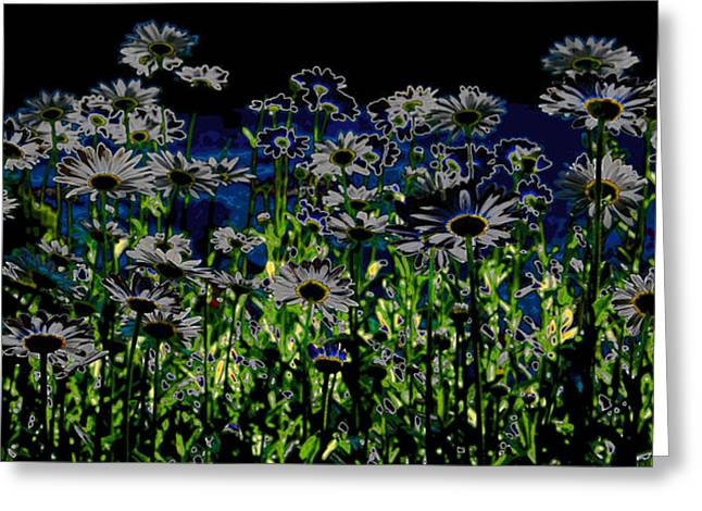 Wild Daisies Greeting Card by David Patterson
