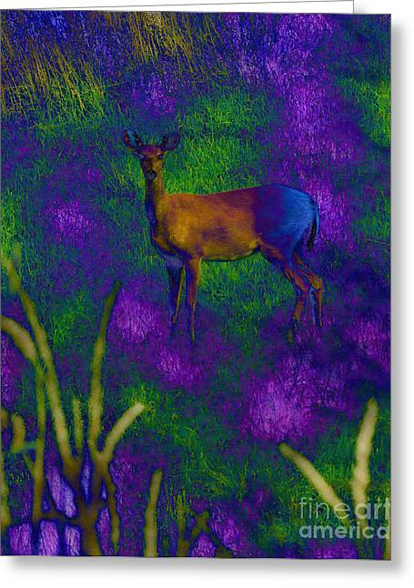 Color Enhanced Mixed Media Greeting Cards - Wild Deer Greeting Card by Minding My  Visions by Adri and Ray