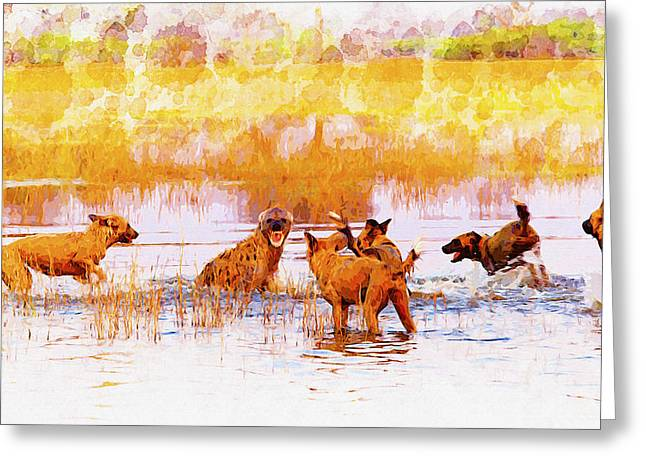 Elephant Seals Digital Greeting Cards - Wild Dogs and a Hyenas Greeting Card by Don Kuing