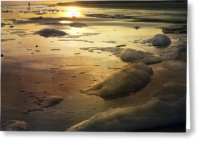 Mt. Pleasant Sc Greeting Cards - Wild Dunes Beach and the Seafoam Greeting Card by Evie Carrier