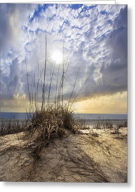 Sanddunes Greeting Cards - Wild Dunes Greeting Card by Debra and Dave Vanderlaan