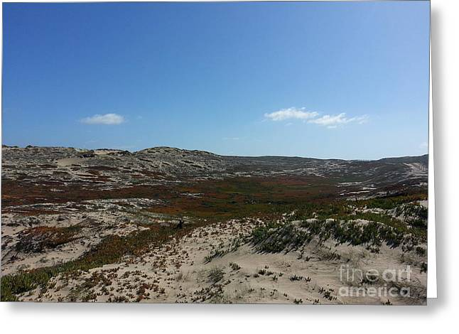 Sand Land And Sky Greeting Cards - Wild Dunes Greeting Card by Roshi Pejhan