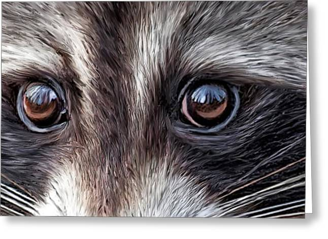 Wild Eyes - Raccoon Greeting Card by Carol Cavalaris