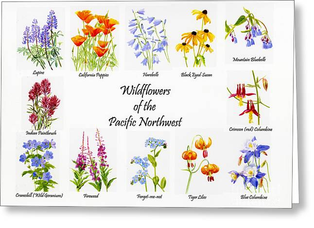 Watercolor Tiger Greeting Cards - Wild Flowers of the Pacific Northwest Poster Greeting Card by Sharon Freeman