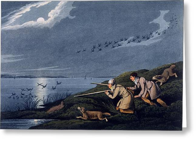 Hound Drawings Greeting Cards - Wild Fowl Shooting, 1820 Greeting Card by Henry Thomas Alken