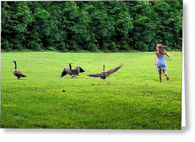 Wild Goose Chase Greeting Card by Kristin Elmquist