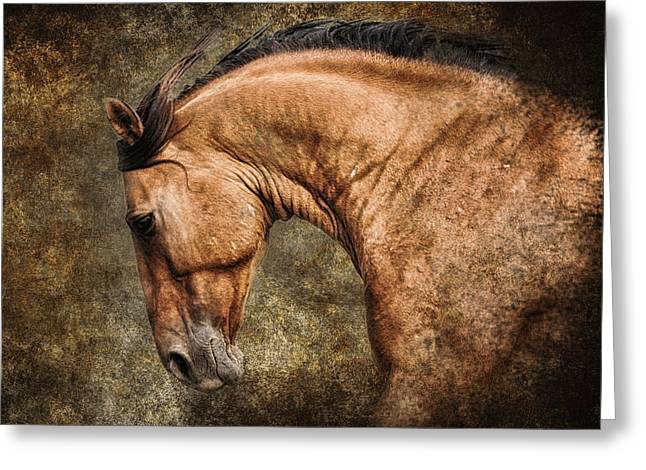 Ron Mcginnis Photography Greeting Cards - Wild Heart Greeting Card by Ron  McGinnis