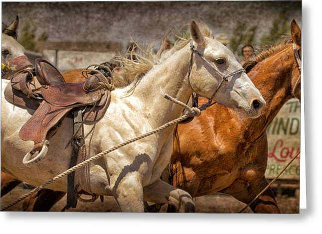 Race Horse Greeting Cards - Wild Horse Race Greeting Card by Susan Kordish