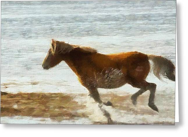 Wild Horses Mixed Media Greeting Cards - Wild Horse Running Through Water Greeting Card by Dan Sproul