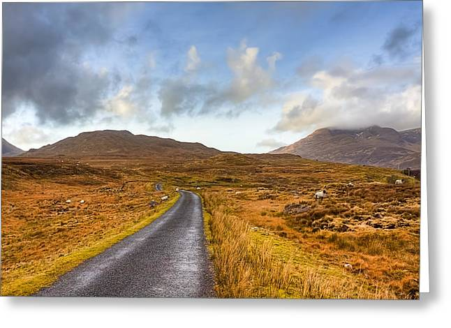 Winter Scenes Rural Scenes Greeting Cards - Wild Landscape of Connemara Ireland Greeting Card by Mark Tisdale