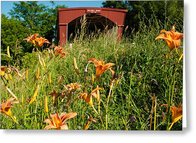 Geobob Greeting Cards - Wild Lillies and Holliwell Covered Bridge Madison County Iowa Greeting Card by Robert Ford