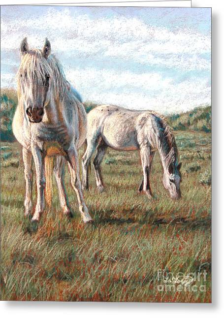 White Horse Pastels Greeting Cards - Wild Ponies Greeting Card by Deb LaFogg-Docherty