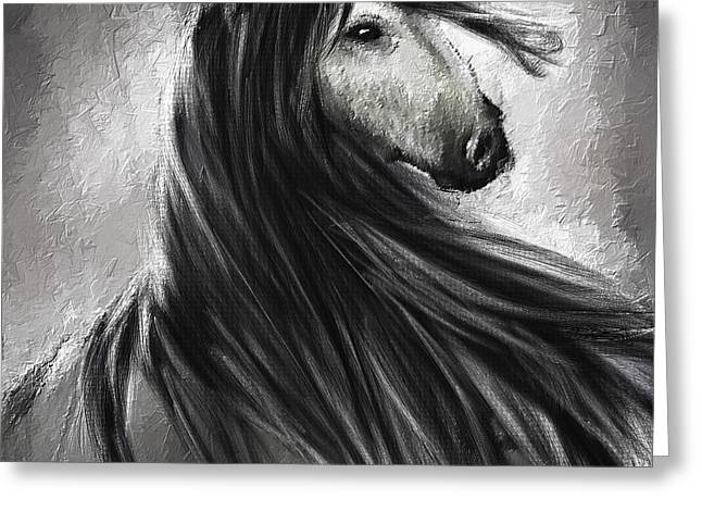 Gray Horse Greeting Cards - Wild Soul- Fine Art Horse Artwork Greeting Card by Lourry Legarde