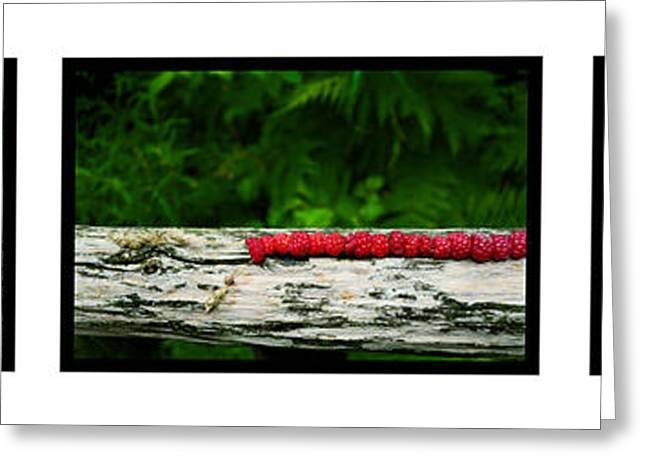Strawberry Bunch Greeting Cards - Wild strawberries on straw Greeting Card by Toppart Sweden