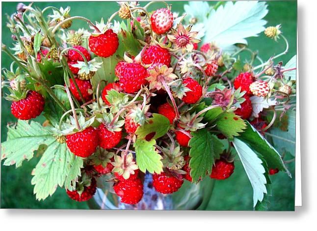 Berry Greeting Cards - Wild strawberry Greeting Card by Janina Lipska