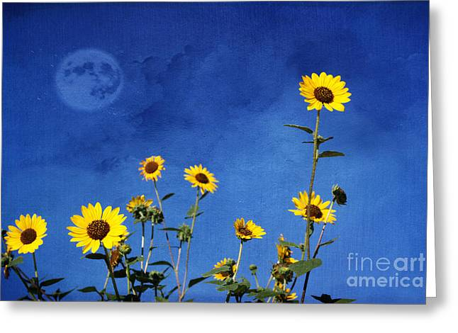 Annuals Greeting Cards - Wild Sunflowers Greeting Card by Juli Scalzi