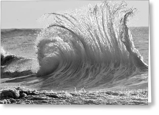 Clean Water Greeting Cards - Wild Wave BW Greeting Card by Anahi DeCanio