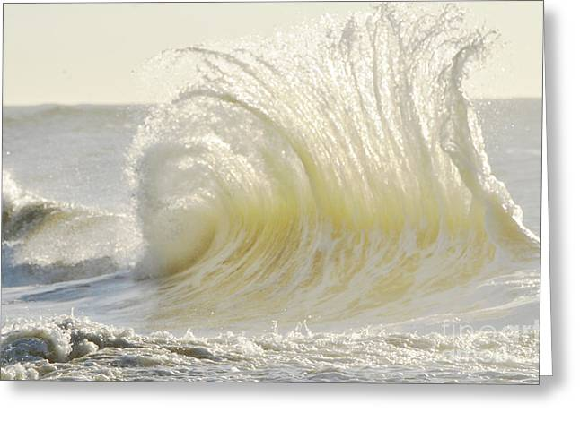 Clean Water Digital Art Greeting Cards - Wild Waves Greeting Card by Anahi DeCanio