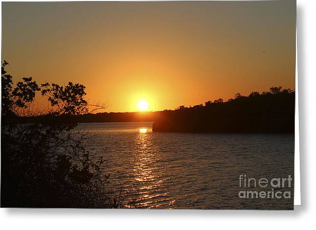 St. Lucie County Greeting Cards - Wildcat Cove Sunset Greeting Card by Megan Dirsa-DuBois
